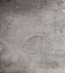 Embryos 3 - Paula Klien