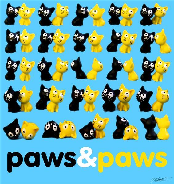 paws&paws, 2018 - Mihnea Cernat