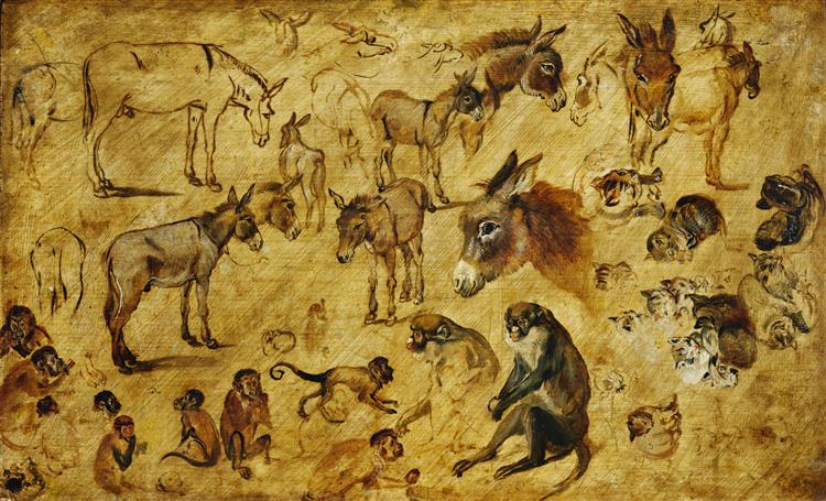 Studies of animals (donkeys, cats and monkeys), 1616 - Jan Brueghel the Elder