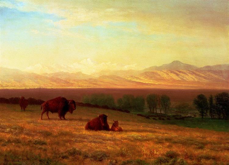 Buffalo on the Plains, 1890 - Albert Bierstadt