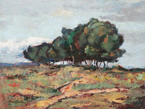 Brăneşti Landscape - Adam Baltatu