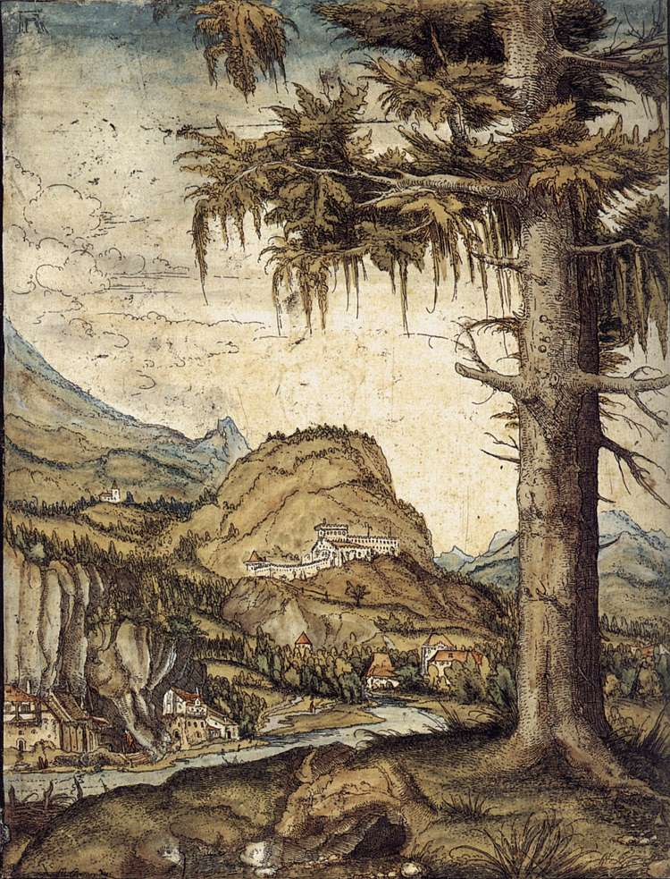 The Large Spruce, 1512-1522