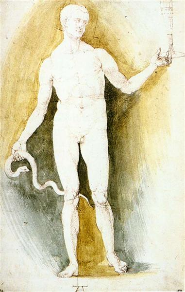 Male Nude with a Glass and Snake (Asclepius), c.1500 - Albrecht Durer