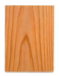 Raw Wood - Alex Hay