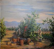 Grape harvest - Ara Bekaryan