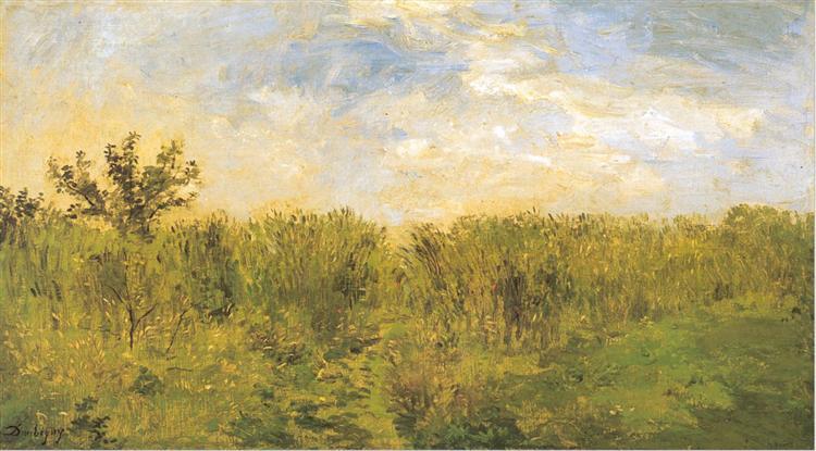 Young corn - Charles-Francois Daubigny