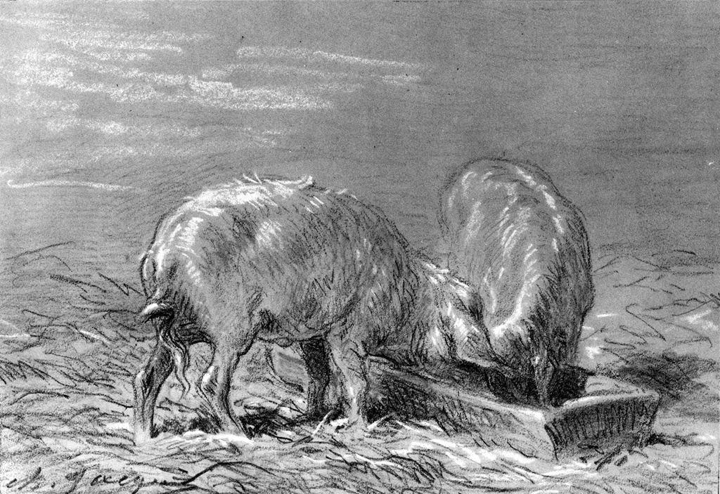 Two Pigs Eating from a Trough, 1860
