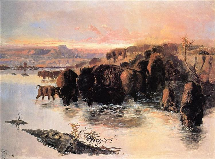 The Buffalo Herd, 1895 - Charles M. Russell