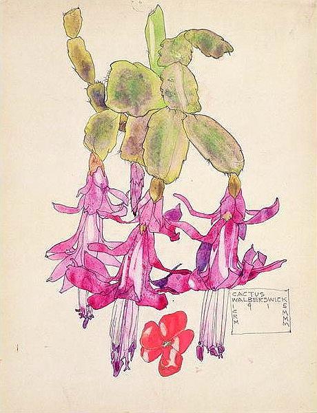 Cactus Flower - Charles Rennie Mackintosh