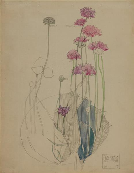Sea Pink, 1901 - Чарльз Ренни Макинтош