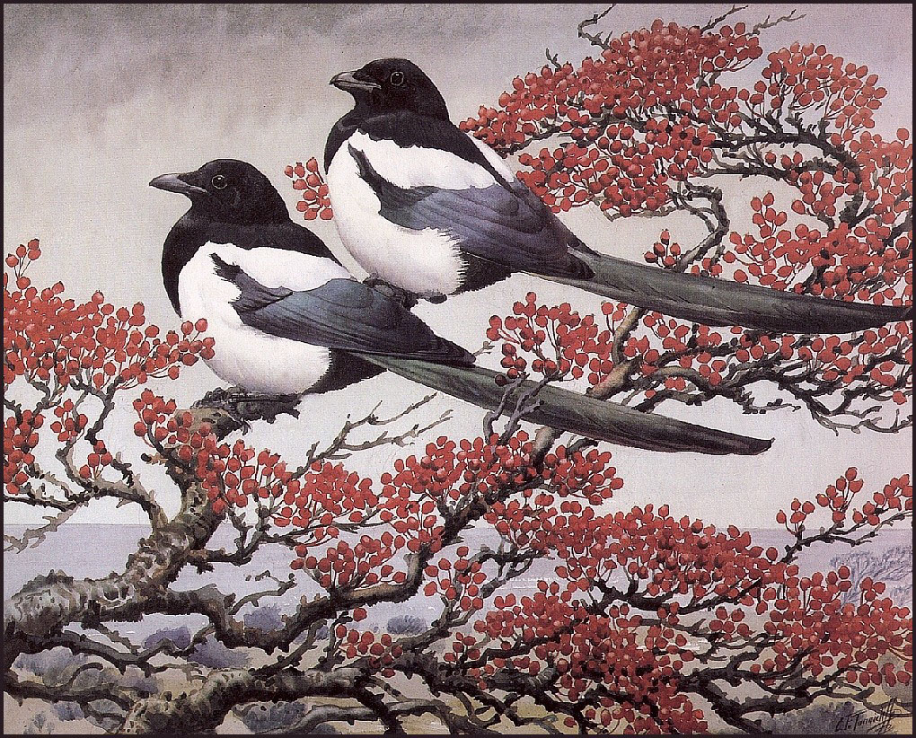 http://uploads1.wikiart.org/images/charles-tunnicliffe/in-the-thorn-tree(1).jpg