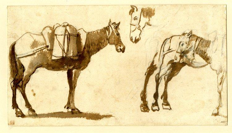 Drawing of mules, including one full length, 1630 - 1640 - Claude Lorrain
