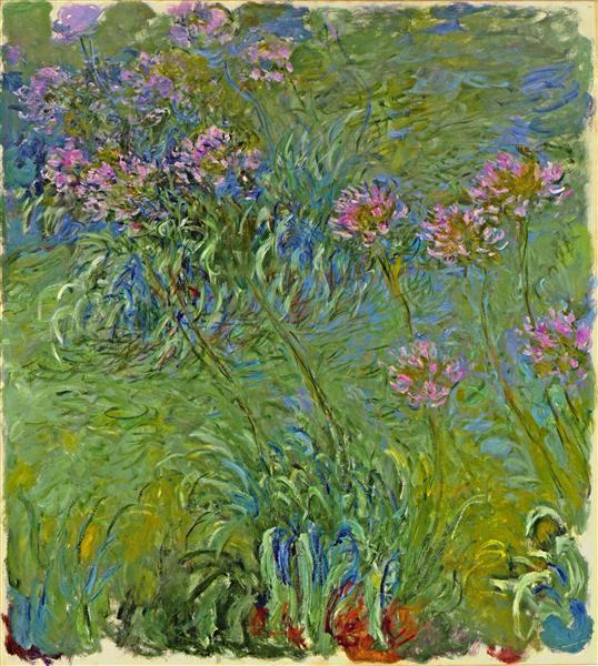 Agapanthus Flowers, 1914 - 1917 - Claude Monet