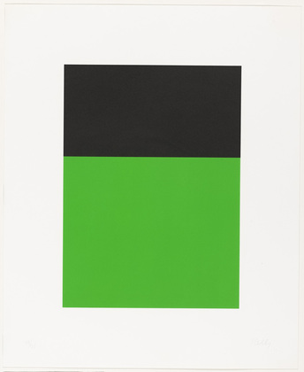 Black-Green from the Series of Ten Lithographs, 1970 - Ellsworth Kelly