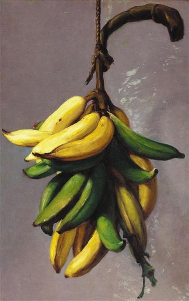 Plátanos amarillos 1893 - Francisco Oller