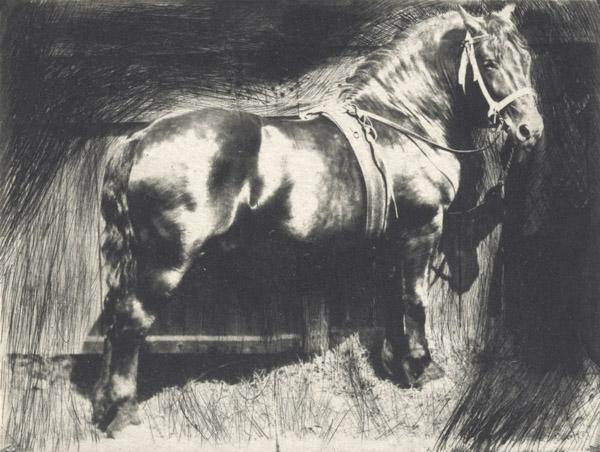 The Horse - Frank Eugene