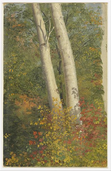 Birch Trees in Autumn, 1865 - Frederic Edwin Church