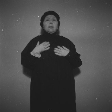 Alterity, 2002 - Geta Bratescu