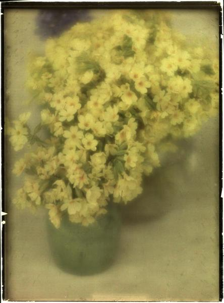 Stilleben mit Blumen, 1908 - Heinrich Kuhn