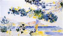 Saint-Clair Landscape - Henri-Edmond Cross