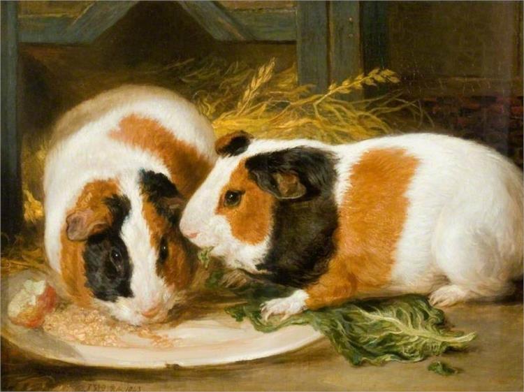 Double Portrait of Henrietta Ward's Pet Guinea Pig, 1843 - James Ward