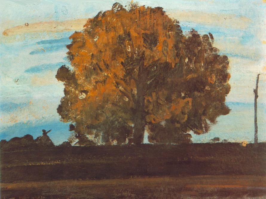 Great Tree at Mártély, 1910