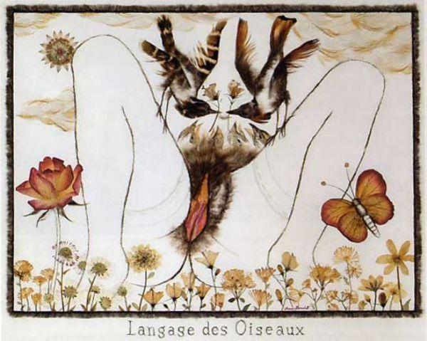 Langage des Oiseaux - Jean Benoit