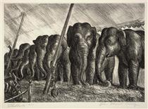 Circus Elephants - Джон Стюарт Керрі