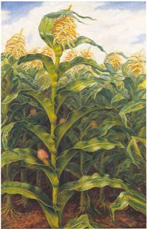 Kansas Cornfield - Джон Стюарт Керрі