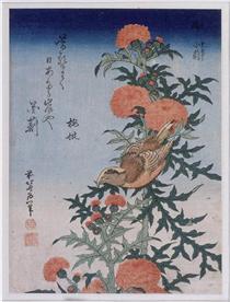 Crossbill e cardo - Katsushika Hokusai