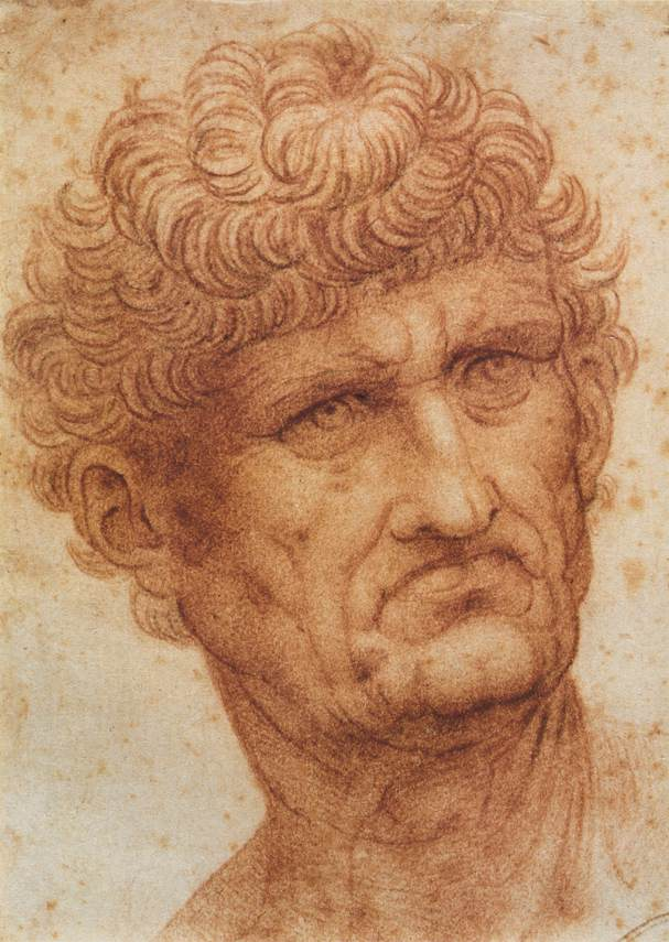 Head of a Man, 1503