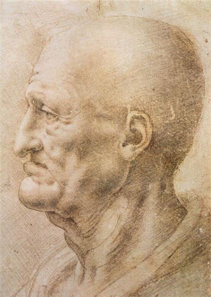 Profile of an old man, c.1505 - Leonardo da Vinci