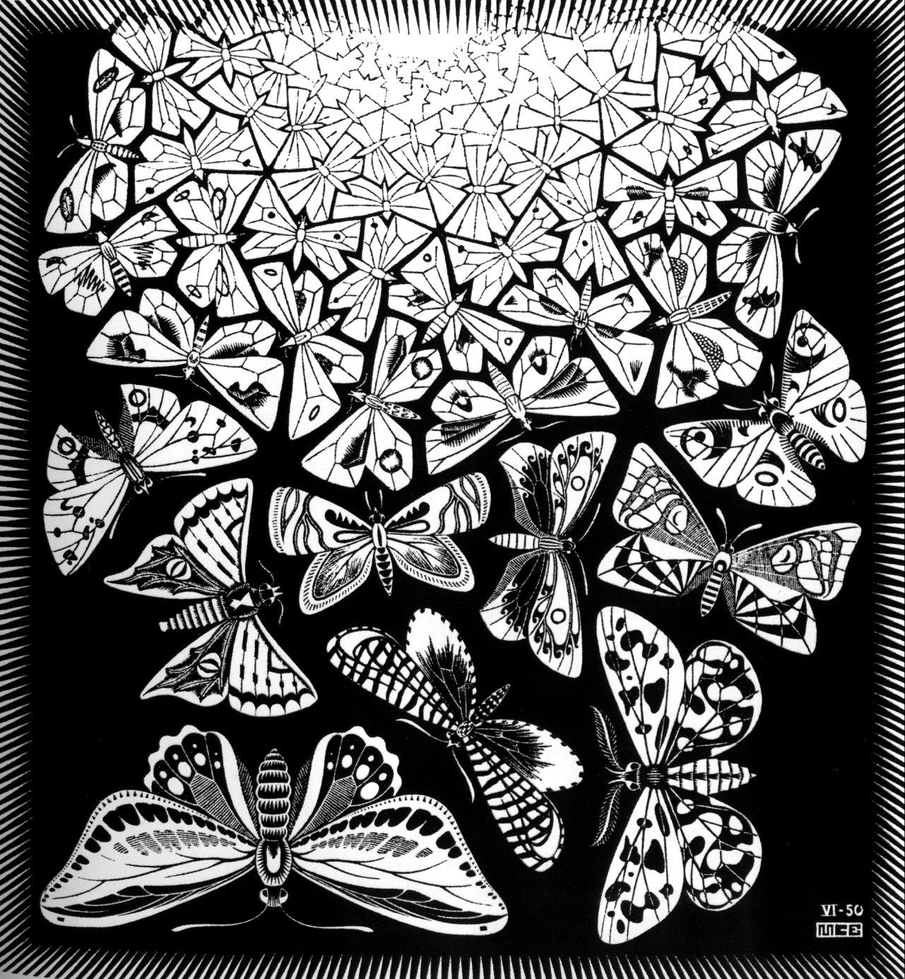 Butterflies on Tessellation Patterns Worksheets