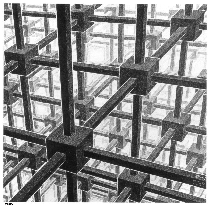 Cubic space division m c escher for Mc escher gallery