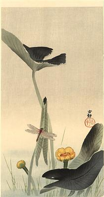 Dragonfly and Lotus - Ohara Koson