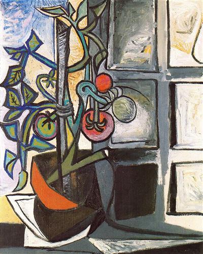 Tomato plant - Pablo Picasso
