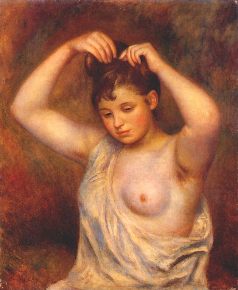 http://uploads1.wikipaintings.org/images/pierre-auguste-renoir/woman-combing-her-hair-1887.jpg