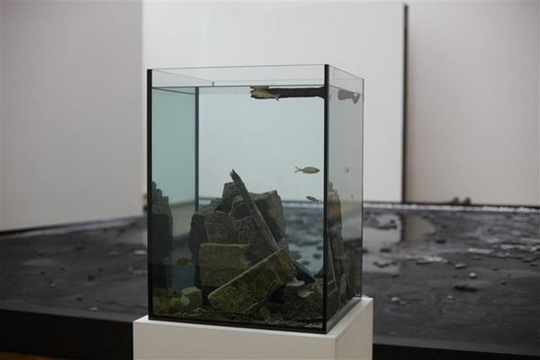 Untitled (Made Ecosystem Centre Pompidou), 2013 - Pierre Huyghe