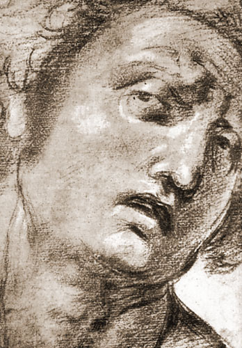 Study for the Head, 1505-1507