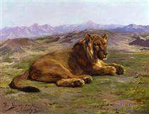 Couching Lion - Роза Бонёр