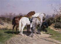 Relay Hunting - Роза Бонёр
