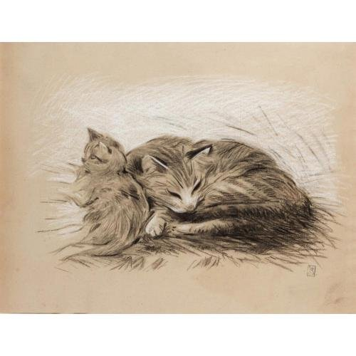 Cats drawing - Theophile Steinlen