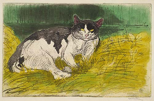 Old Cat - Theophile Steinlen