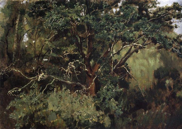 Akhtyrsky oak - Viktor Vasnetsov
