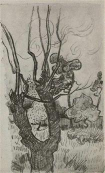 A Bare Treetop in the Garden of the Asylum - Vincent van Gogh
