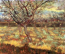 Albaricoqueros en el flor, Vincent van Gogh