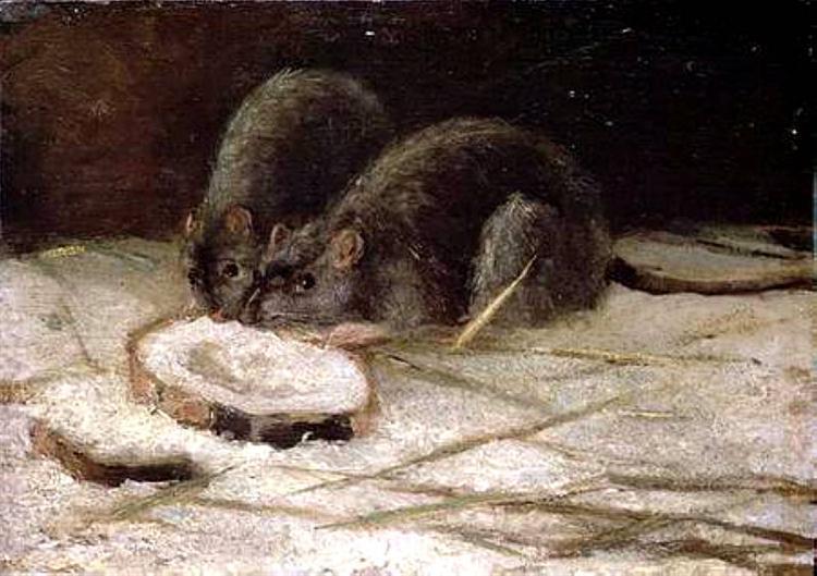 Two Rats, 1884 - Vincent van Gogh